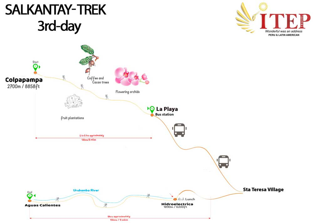 Map - DAY 3 | Descending into the Cloud Forest
